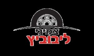 לוגו צמיגי ליבוביץ